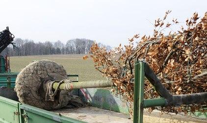 Wühlmauskorb für ballierte Bäume